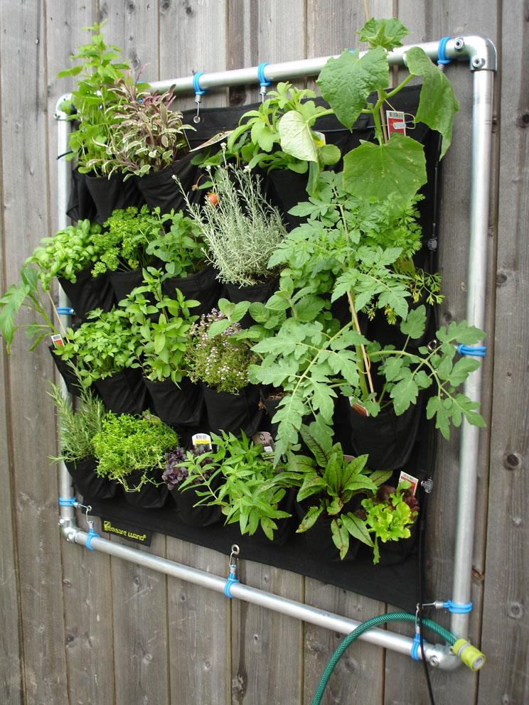 Von essbaren Wänden und Rasenmährobotern