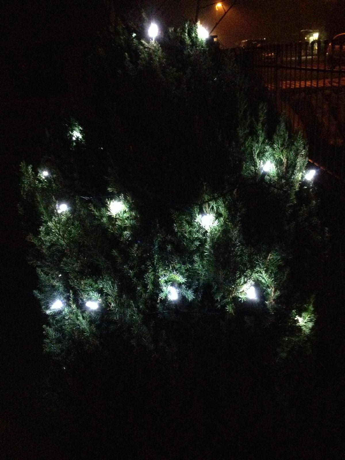 Weihnachtliches Leuchten
