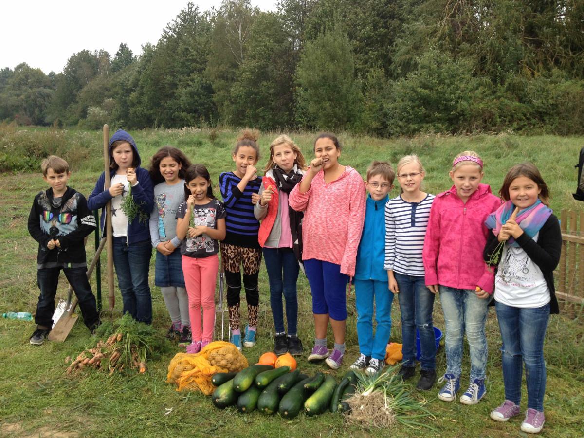 Hilfe für die GemüseAckerdemie