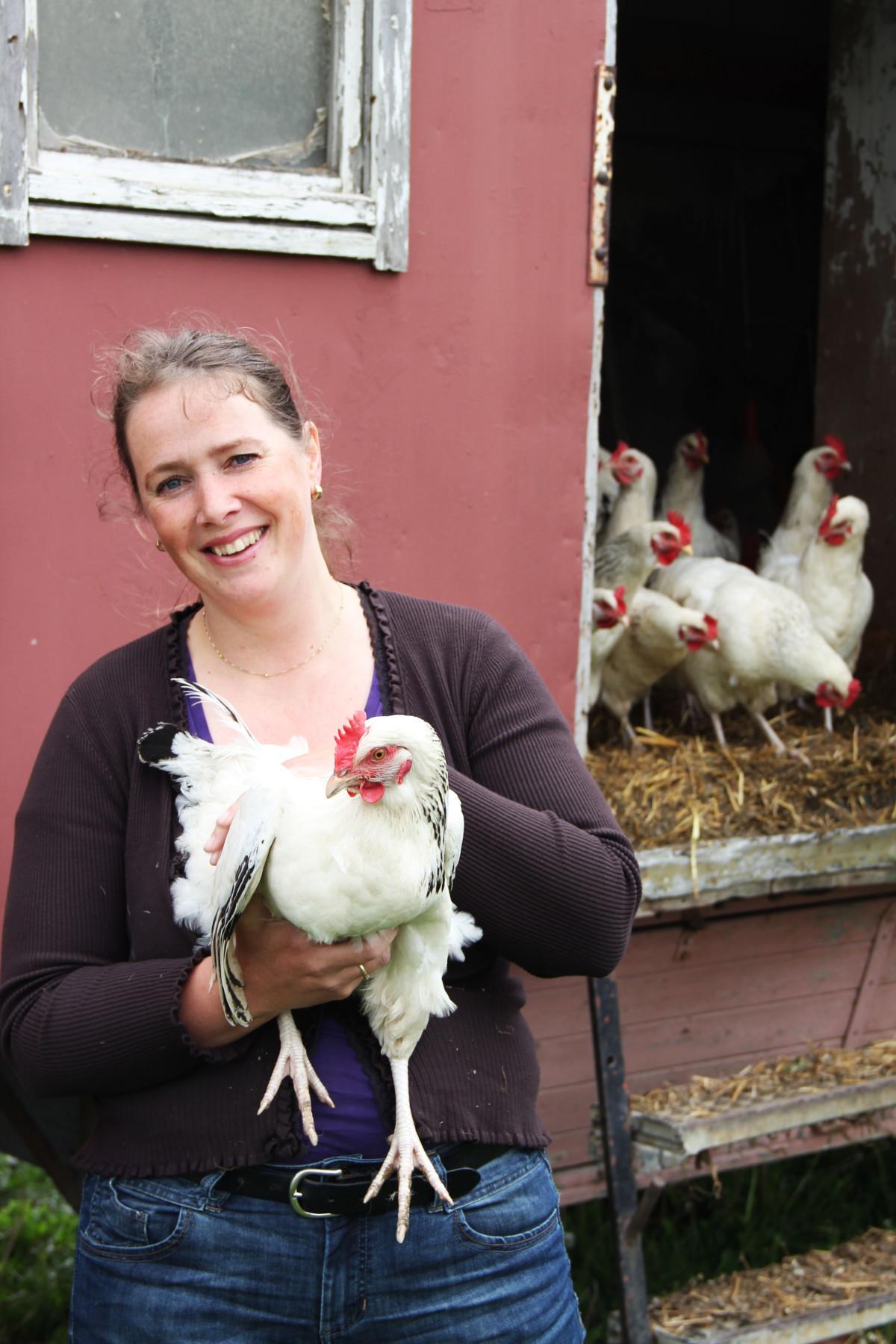 Bauernhof sucht Hühnerpaten